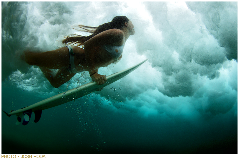 LINDSAY PERRY SURF COLLECTIVE NYC