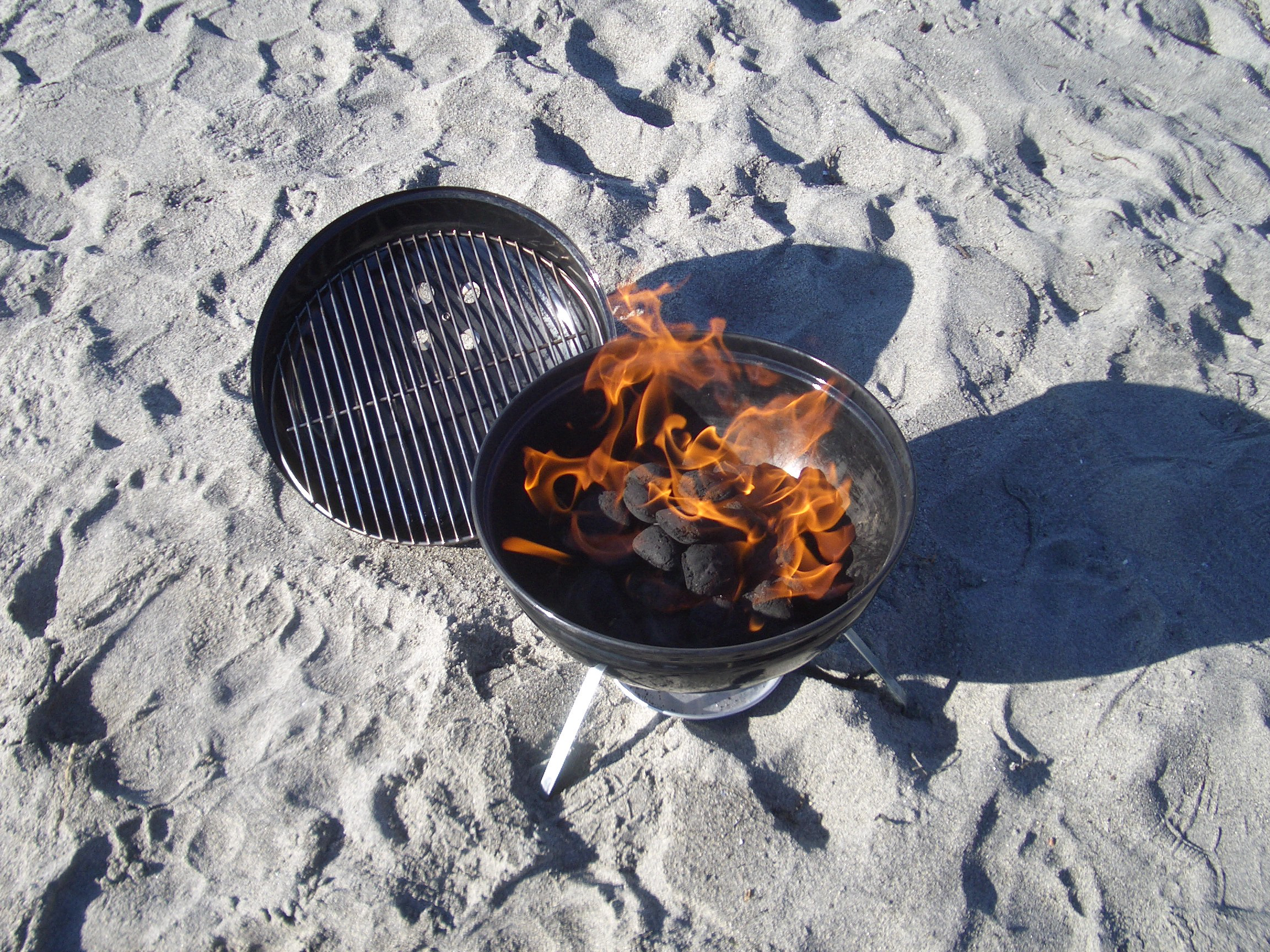 Grilling_on_the_Beach_in_February